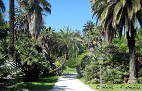 Botanical garden of Rome